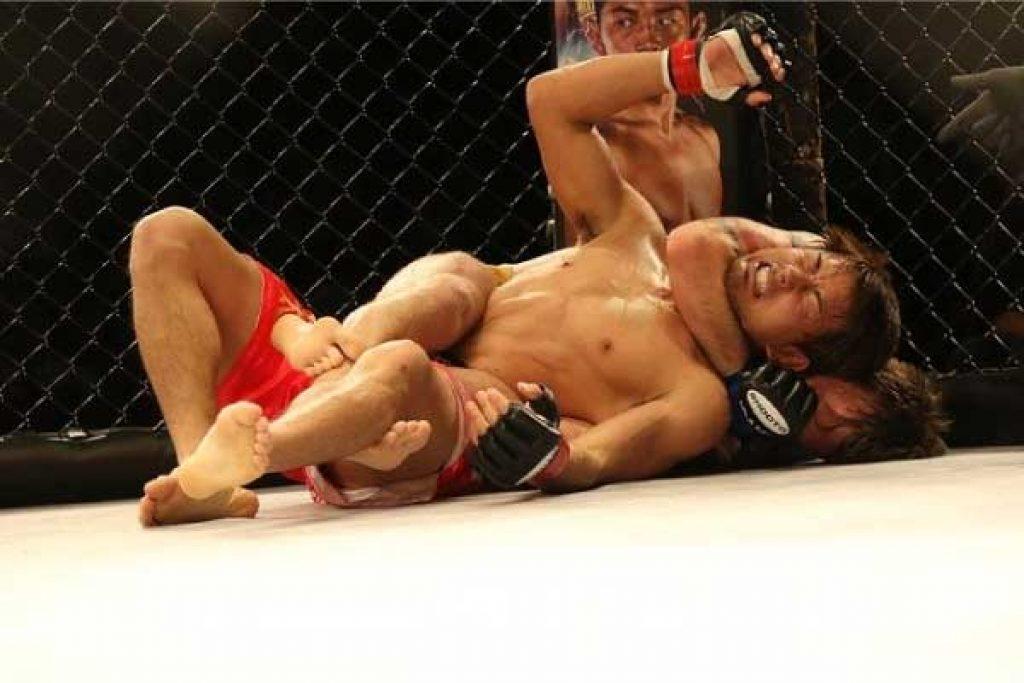 Se UFC i norge